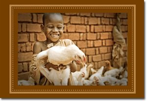 Hands of Hope - Little Boy with Chicken Gift Card (8)