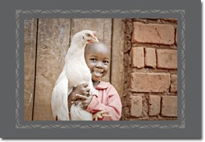 Hands of Hope - Little Girl with Chicken Gift Card (10)