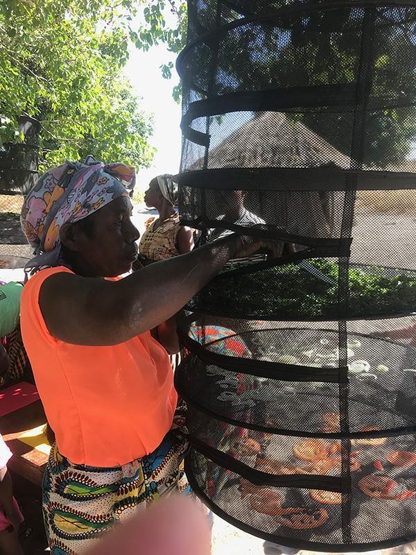 African Lady Dehydrating Cashews